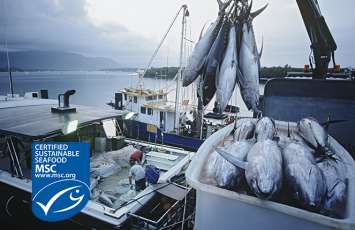 bureau veritas MSC sea food certification